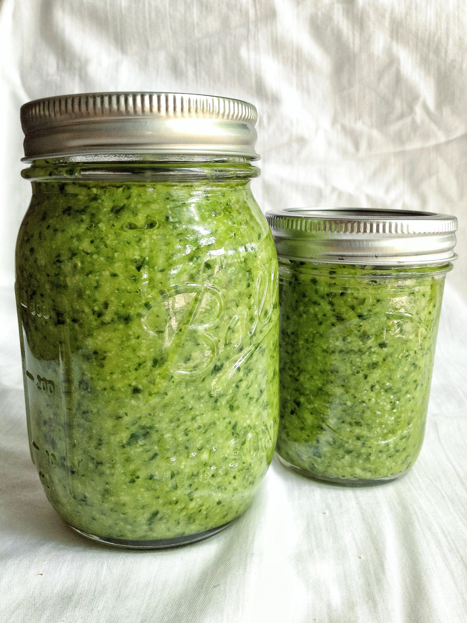poor-mamas-pesto-recipe
