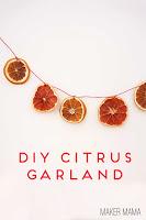 Citrus-Garland-Ornaments122Bcopy