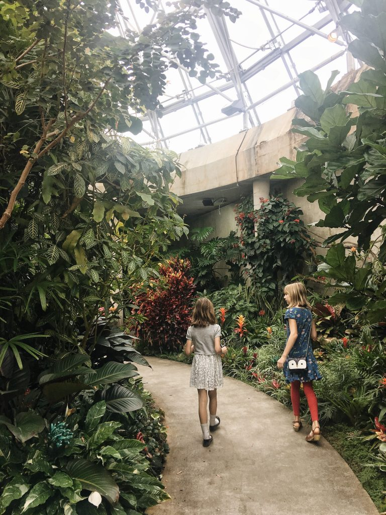 The San Antonio Botanical Garden 39 S New Family Adventure Garden Maker Mama