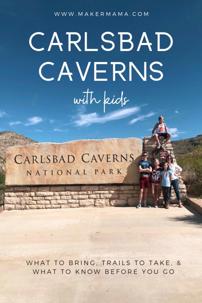 carlsbad-caverns-new-mexico (1)