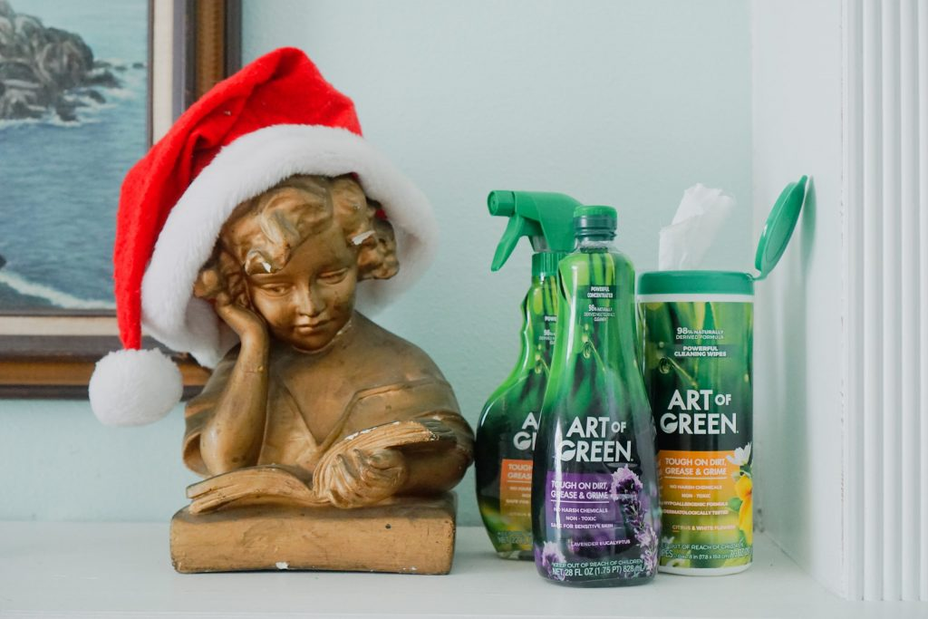 art-of-green-holiday-cleaning2