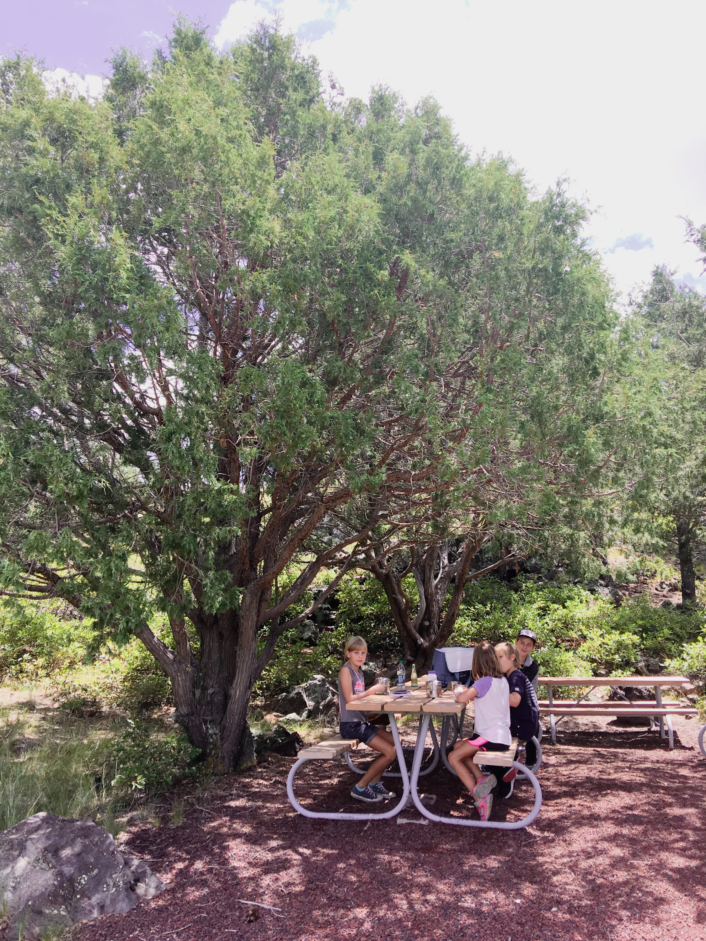 capulin-volcano-national-monument-picnic